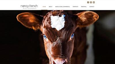 Custom WordPress website design Snyders Graphics mitchell, ontario marketing Nancy French Photography
